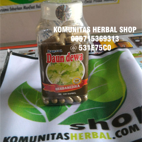 kapsul-herbal-daun-dewa