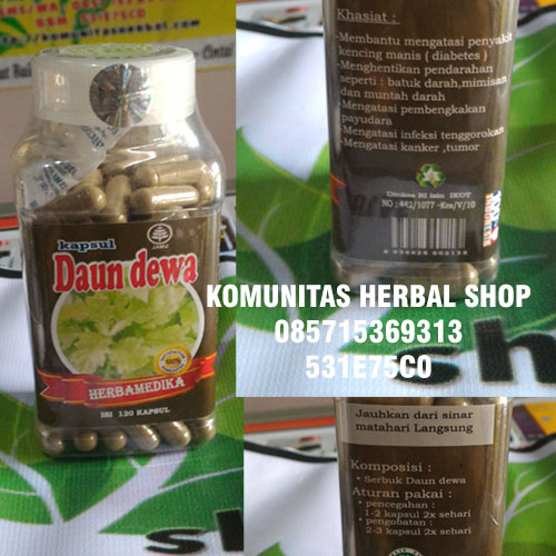 manfaat-kapsul-herbal-daun-dewa